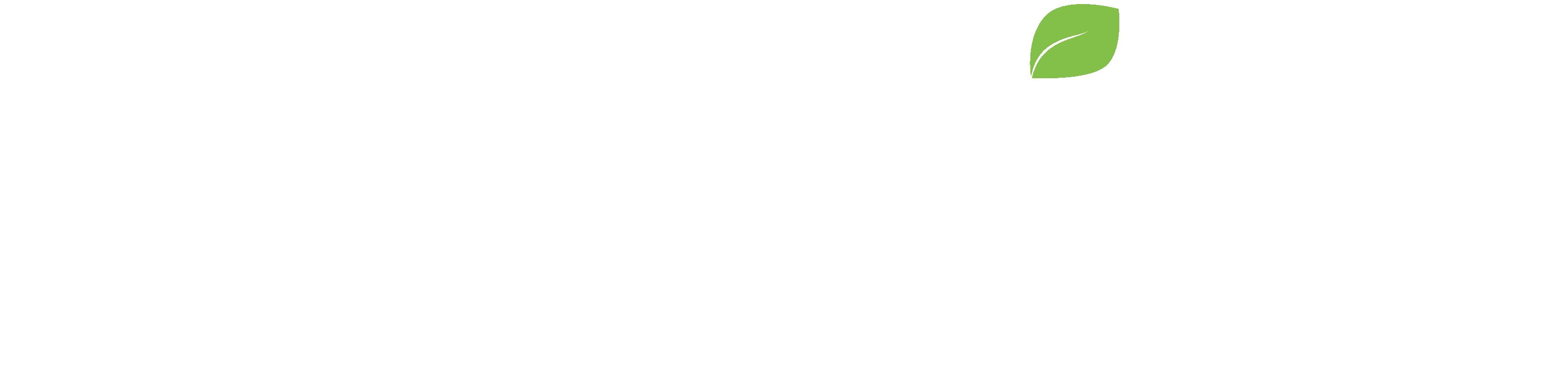 pixelvine-logo